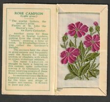 More details for kensitas wix tobacco small silk flower and cover rare rose campion  # 38