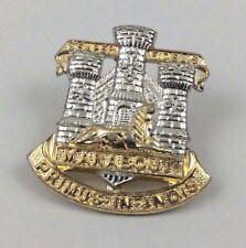 Staybrite - The Devonshire and Dorset Regiment collar badge - military badge