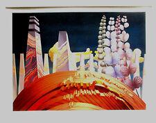 WOLFGANG HUTTER Originalgraphik.HANDSIGNIERT, limit 50, 2014 mit Rahmen 47x61