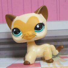 Littlest Pet Shop Collection LPS Toys #3573 Short Hair Heart Face Beard Cat RARE