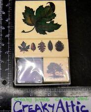 PSX MAPLE LEAF TREE LEAVES BORDER 3 RUBBER STAMPS SET RETIRED SK607 HTF NIP