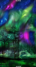 """Northern Lights Panel 24x44"""" Cotton Quilt Fabric by Timeless Treasures"""