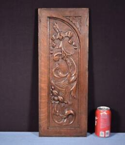 *Antique French Carved Oak Wood Panel Salvage with Detailed Carvings