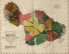 Maui Hawaii c1885 map 30x24