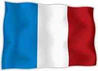 10 x Autocollant Sticker drapeau france français  flag vinyle pour voiture moto