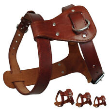 Strong Brown Genuine Leather Dog Harness Adjustable for Small Medium Large Dogs