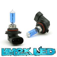 2x 12V 100W HB4 Halogen Glühlampe Glühbirne Halogenbirnen 100 Watt Xenon Look