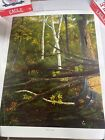 1997 Deena Ives WILD GINSENG forest print numbered Numbered 424/500