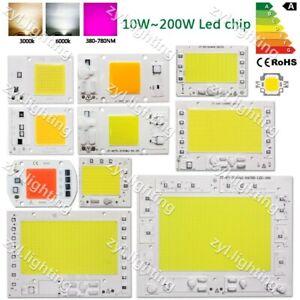 LED Chip COB Lamp Bead 10W 20W 30W 50W 100W 150W 200W SMD Plant grow flood light