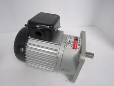 LUYANG GEAR MOTOR LV18-100-50-S3 1/8HP 220/380V 50/60Hz  1400/1700RPM