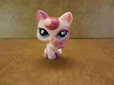 Littlest Pet Shop #2362 Cat Kitten Blue Eyes LPS