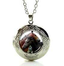 Picture in a Gift Box Fast Shipping Two Horses Locket Pendant Necklace Horse Art
