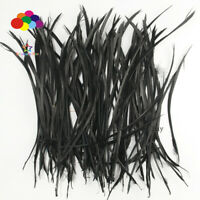 Goose Feathers 20-25cm 8-10 inch Carefully Crafted Smooth Dyed Black Biots Juju