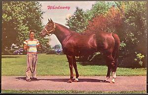 WHIRLAWAY Calumet Stable Triple Crown Winner Vintage Horse Racing Postcard