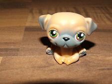 Littlest Pet Shop Hund Mops Dog Hellbraun mit dunklen Ohren & Schnauze Rar Look