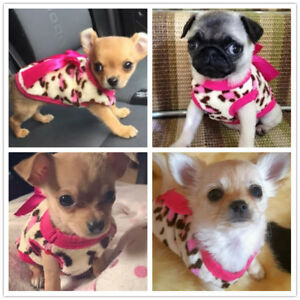 XXXS/XXS/XS Teacup Hoodie Dog Puppy Clothes Winter Sweater for Chihuahua Yorkie