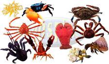原色甲殼類圖鑑Yujin Shrimps and Crabs1.5 ( shellfish angouste,lobster)x8