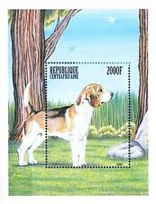 👉 $$ NOT wholesale$$ CENTRAL AFRICA 1999 DOGS (BEAGLE) S/S MNH ANIMALS