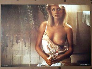 Sexy Eva 'Eva' Photo By Tony Stone Original 1978 Poster