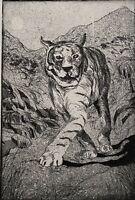 SIGNED 1999 TIGER FIGURE PORTRAIT STUDY  ETCHING TIGER #10/18