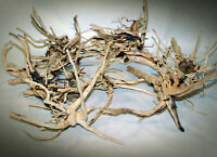 """NATURAL SPIDERWOODS DRIFTWOODS  SMALL 8""""-12"""" - 1 OR 2 OR 3 PCS - AQUASCAPING"""