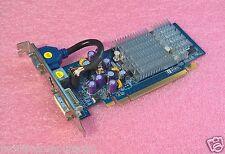 SCHEDA GRAFICA  PCI EXPRESS_GeFORCE_256MB_GF 6200 _TC_128BIT_DDR_HDTV<SPARKLE>
