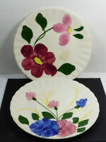 "Lot of 2 Blue Ridge Southern Potteries Flower Pattern hand painted 9.25"" plate"