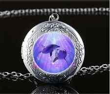 Dolphin Love Photo Cabochon Glass Tibet Silver Locket Pendant Necklace