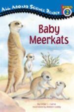 Baby Meerkats (Paperback or Softback)