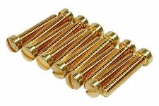 "Filtertron Slotted Fillister Pole Screws - 6-40 x .75"" - Gold- Qty 12"
