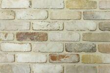 Retro-Verblender NF BH1127 beigebraun-bunt Klinker Vormauersteine