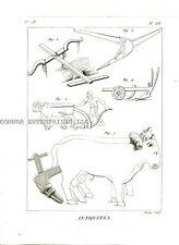 1751 DIDEROT ANTIQUITIES ENGRAVING ROMAN FARMING ANIMALS PLOWS E #333 1002
