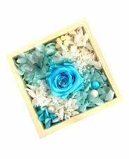 Je T'aime Multi-Color Preserved Fresh Roses Immortal Flower - Tiffany Blue