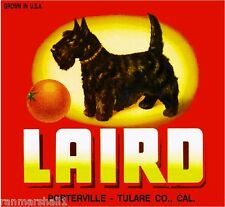Porterville Laird Scottish Terrier Scottie Dog Orange Fruit Crate Label Print