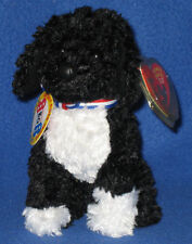 TY BO the PORTUGUESE WATER DOG - 2.0 BEANIE BABY - UNUSED CODE - FADED HANG TAG