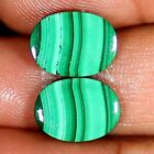 Natural Green MALACHITE Pair Cabochon 13.50 Cts Oval Shape 11x14x3 mm Gemstones