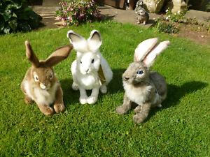 Brand new Stunning Hansa Snow white rabbit.