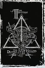 HARRY POTTER - DEATHLY HALLOWS POSTER - 24x36 - 160480