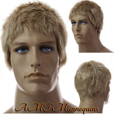 Short male wig cosplay - synthetic men's wig - #12-LB