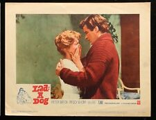LAD: A DOG Peter Breck Peggy McKay ORIGINAL 1961 MOVIE LOBBY CARD POSTER