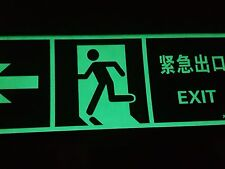 EXIT Glow in the dark sign for chinese business. In both languages.Size 32cmx12