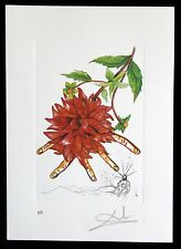 SALVADOR DALI lithograph FLORDALI   HAND SIGNED 1979