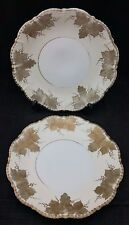 Pair of Handpainted Victorian Plates, Hand Gilded with Grapes & Vine Leaves