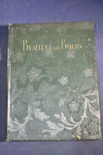1931 *ILLUSTRATED* Beauty from Bulbs by John Scheepers