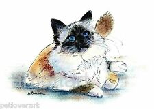 Birman #1 Cat Art Aceo Card Print by A Borcuk