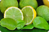 NEW!! 10 seeds-Of-Thai-KAFFIR-Lime-Organic-Seeds-From-Thailand rare item