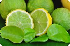 NEW!! 30 seeds-Of-Thai-KAFFIR-Lime-Organic-Seeds-From-Thailand rare item