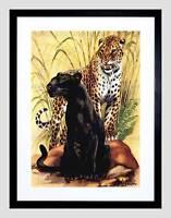 PAINTING ANIMAL LEOPARD BLACK SPOTTED CAT JUNGLE FRAMED ART PRINT MOUNT B12X7201