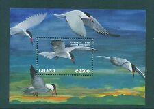 Ghana 2005 Roseate Tern Bird Minisheet MNH SG 2139a