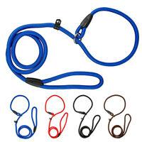 Nylon Pet Dog Choke Collar and Leash Set Small Large Dog Slip Lead Blue Coffee